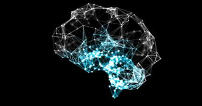 Brain Activity Visualization