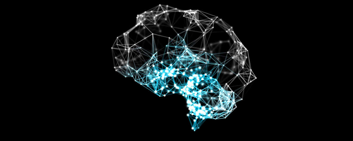 Brain Activity Visualization
